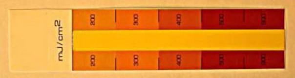 UV 측정 스티립